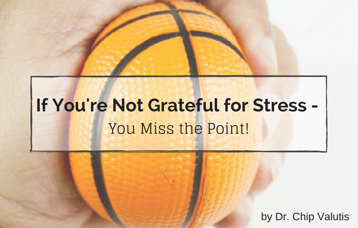 If you're not grateful for stress – you miss the point!